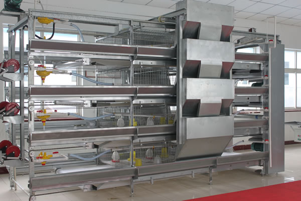 H Type Ladder Type Feeding Machine