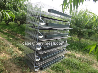 Quail Cage for sale