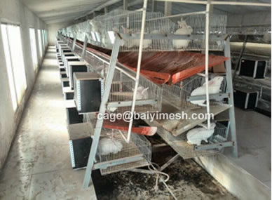 rabbit battery cage wholesale